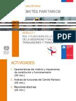 Modulo 1 Comites Paritarios PPT