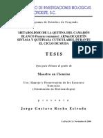 Meatbolismo de La Quitina Del Camarón Blanco Litopenaeus Vannamei