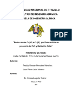 TESIS -FINAL-2013.pdf