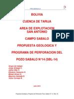 Informe Del Pozo SBL-14
