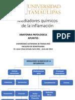 Mediadores Químicos PDF