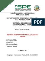 Informe Ensayo Fréjol