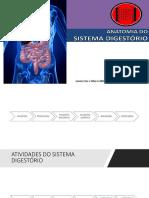Anatomia Digestório - Prática