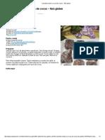 Cubulețe simple cu nucă de cocos – fără gluten.pdf