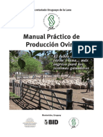 SUL Manual Practico de Produccion Ovina