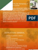 133062367-Departamento-de-Alimentos-Y-Bebidas-Funciones.pptx