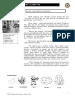 Português para Estrangeiros - Lição 05 - Exercício 01