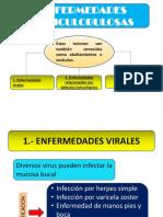 Evy Diapositivas