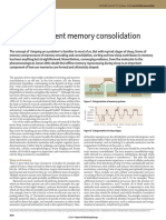 Sleep-Dependent Memory Consolidation