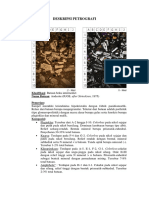 Deskripisi petrografi
