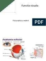 analizator vizual 2017.pdf