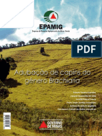 Epamig_braquiaria