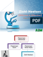 Sponsor AIM Ziehl–Neelsen121117