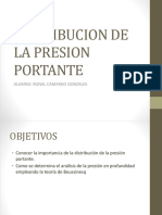 Distribucion de La Presion Portante