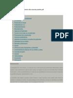 Tecnicas Estrategias Pensamiento Critico Maureen Priestley PDF (1)