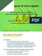 7_DMathieu_réseau_algues
