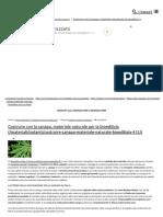 Costruire Con La Canapa, Materiale Naturale Per La Bioedilizia