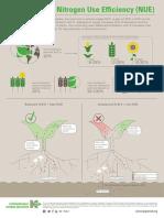 Potassium and Nitrogen Use Efficiency