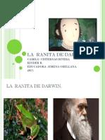 La Ranita de Darwin