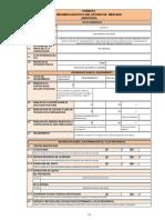 Directiva 0102017 Formatos de Resumen Ejecutivo 20170721 163652 843