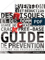 Reduction Des Risques Cocaine Basee Guide Professionnels 2013