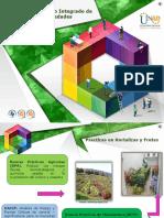 Formato PowerPoint OVI 2