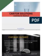 Caritor Staffing profile _2017.pptx