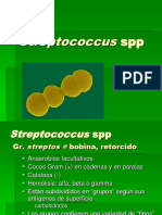 Streptococaceae