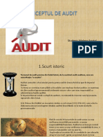Conceptul de Audit