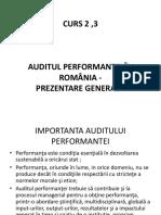 auditul performantei