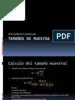 Clase 04 Tamaños de Muestra y Planeamiento Sistematico2
