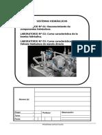 Lab 01 Hidráulica Planta.docx