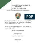 Informe Técnico de Practica Pre-profesional