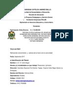 Organizacion Del Portafolio