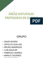 areasnaturalesprotegidas-110430234523-phpapp02