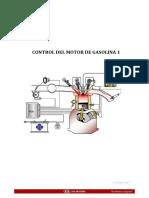 Control Motor Gasolina 1