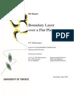BSc_report_Peter_Puttkammer (1).pdf
