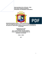 PERFIL DE TESIS LIZ.docxff.docx