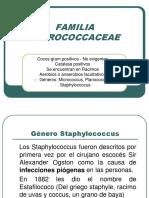Micrococaceae
