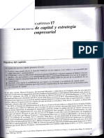 Estructura de capital y estrategia empresarial.pdf