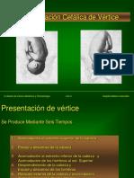 06-T-Parto_Cefalico-f-.ppt