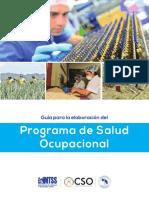 Guia Programa Salud Ocupacional
