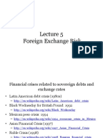 Lecture 5 Foreign Exchange Risk