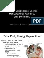 Energy Expenditure During Walking Jogging