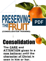Consolidation Preservingthefruitversion2