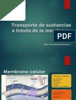 Transporte a traves deMembrana celular 5.pptx