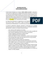 Resumen Ejecutivo Proyecto Tingo Maria