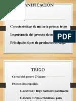 PROPIEDADES REOLOGICAS DE LA HARINA.ppt