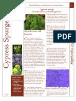 Cypress Spurge Fact Sheet