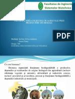 biotehnologii.pptx